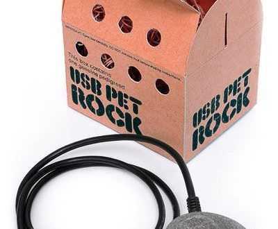 USB Pet Rock